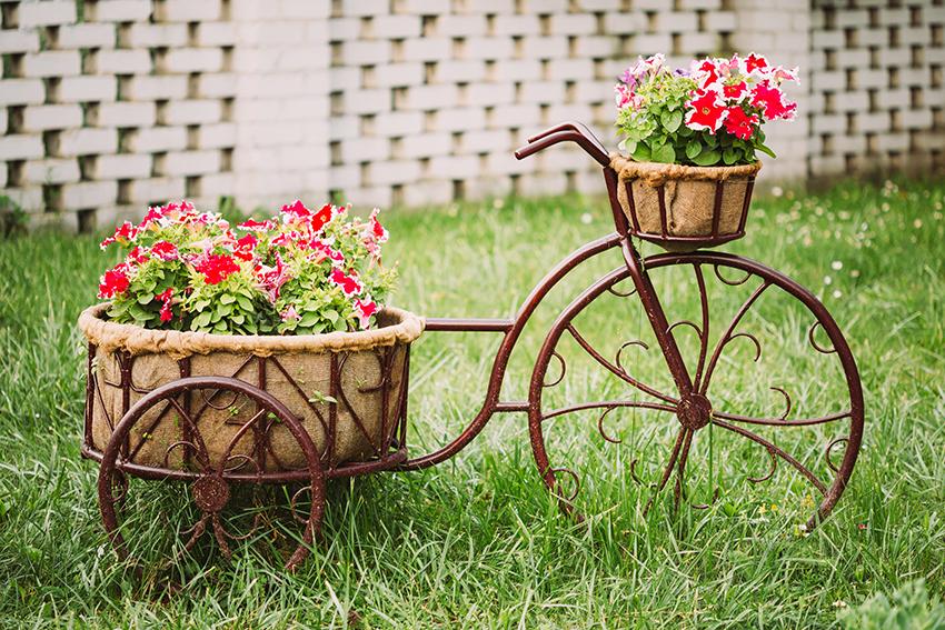 Správna kombinácia rastlín pre dokonalú záhradku
